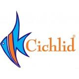 Cichlid детская одежда для девочек